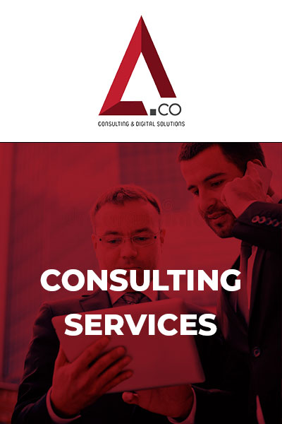 A&Co Consulting Services
